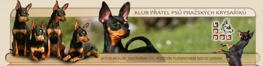 Klub přátel psů pražských krysaříků